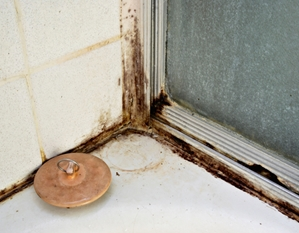 Poor indoor air quality can damage a building.